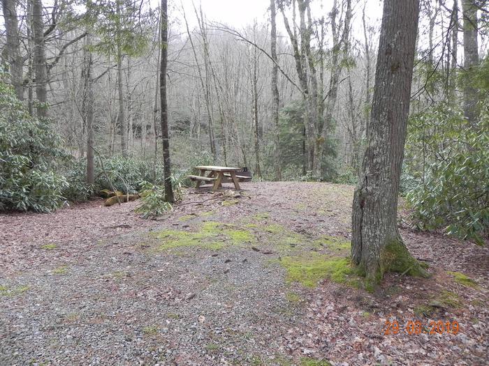 Campsite Campsite  drivemway