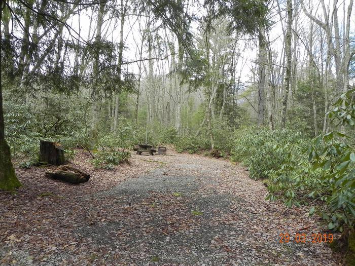 Driveway into campsiteCampsite Driveway