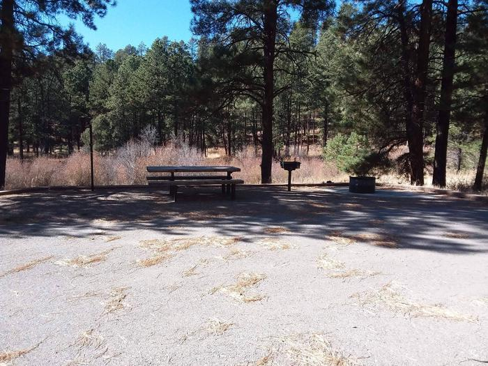 Site 1 has spacious parking and provides campers with a shaded picnic table, fire pit and grill.Site 1