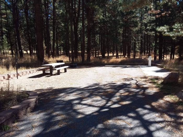 Site 5 sits in sunlight with a picnic table, lantern post, and fire ring and grill.Gorgeous landscape at site 5.