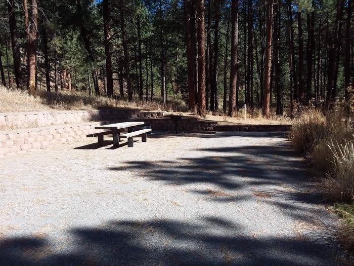 Campsite number 10 has a sunny picnic area and shaded drive way.Site 10