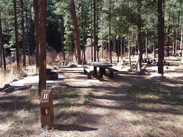 Campsite number 11 is in the group area surrounded by pines.Group site 11 with ponderosa pines.