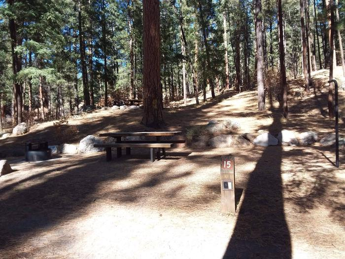 Beneath a large pine sits site 15 with its picnic table, fire pit and post.Site 15