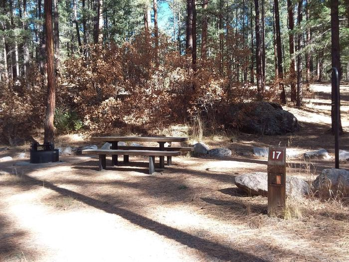 Picnic table and grill at Site 17 filled with oaks and pine.Site 17