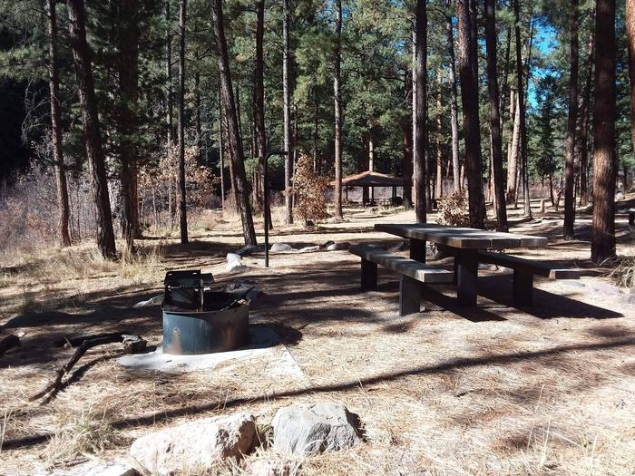Site 19 has sun, shade, a grill, picnic table and lantern post.Site 19