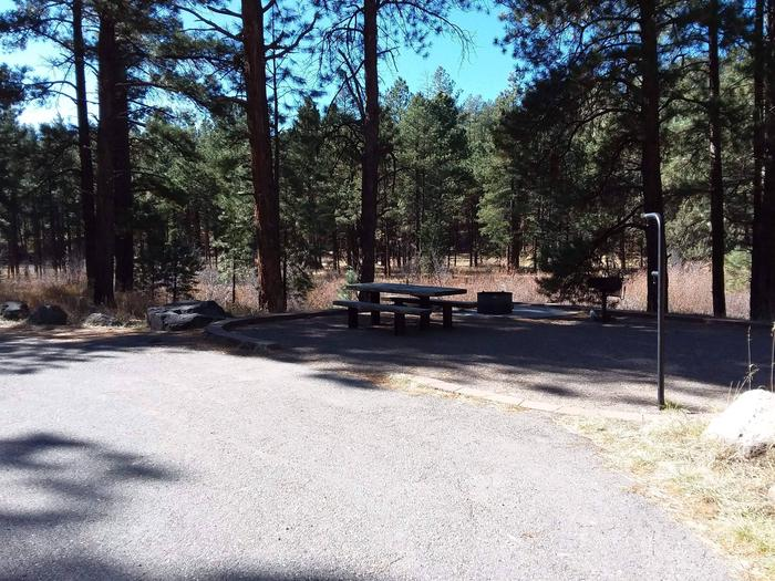 Underneath the shade of a ponderosa pine sits site 20 with its picnic table, grill and fire pit along witha lantern post.Site 20