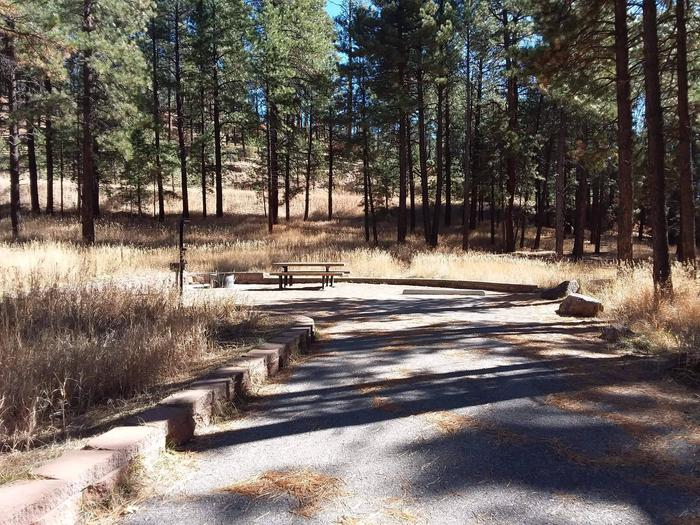 Site 22 has a back in driveway with a lantern post, table, and fire pit.Site 22 with surrounding pines.