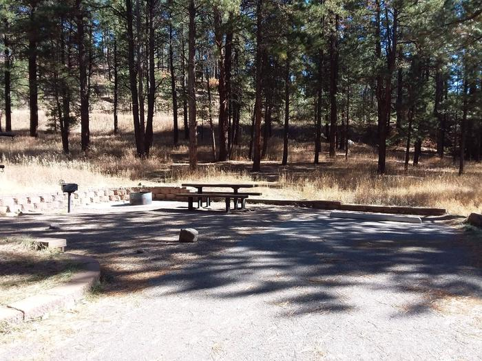 site 23 is near a stand of pines and has a picnic table, pedestal grill, and fire pit.Site 23 has shade and plentiful ponderosa pines.