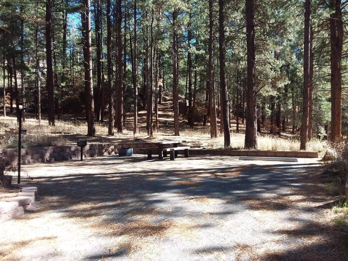 Site 25 has a grill, picnic table, fire pit, and lantern post along with a spacious tent pad area.Site 25 situated in scenic pines.