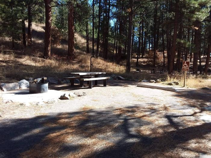 Site 26 is ADA accessible with a picnic table, fire ring, and lantern post.ADA accessible site 26