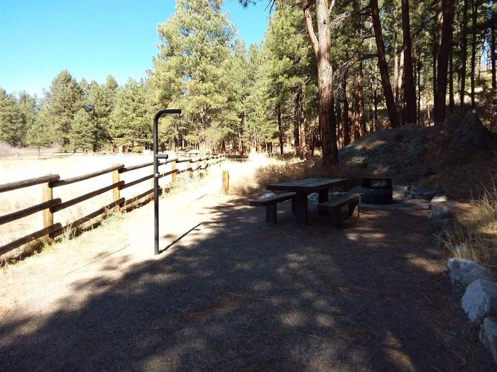 Site 29 sits next to an open meadow and provides a lantern post, picnic table, and fire pit.Quiet and secluded site 29
