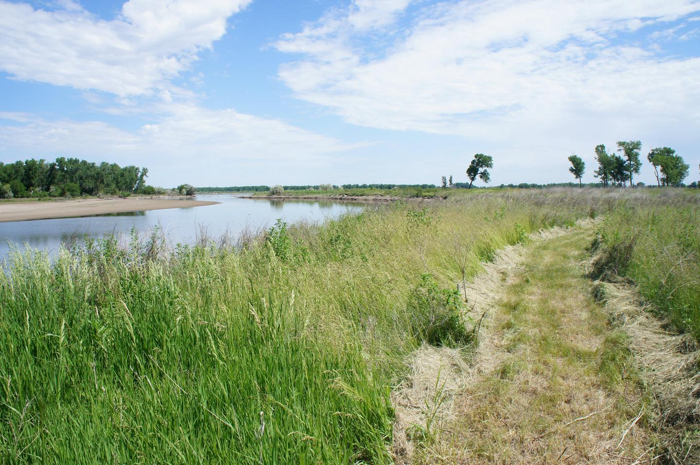 Bow Creek Primitive CampingBow Creek and mowed nature trail
