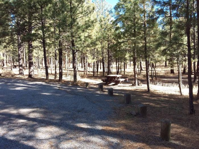 Site 6 provides shade from nearby pines along with a fire pit and picnic table.Site 6