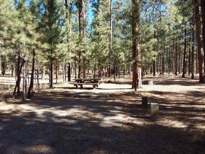 Site 13 picnic table and fire pit shaded by ponderosa pine.Site 13