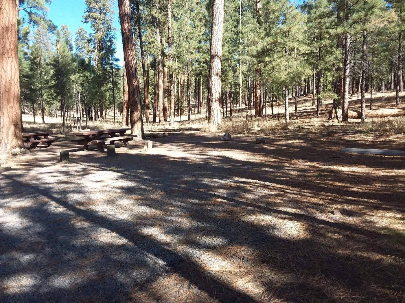 Site 23 designed with a double driveway and provides two picnic tables and a firepit for larger groups.Site 23
