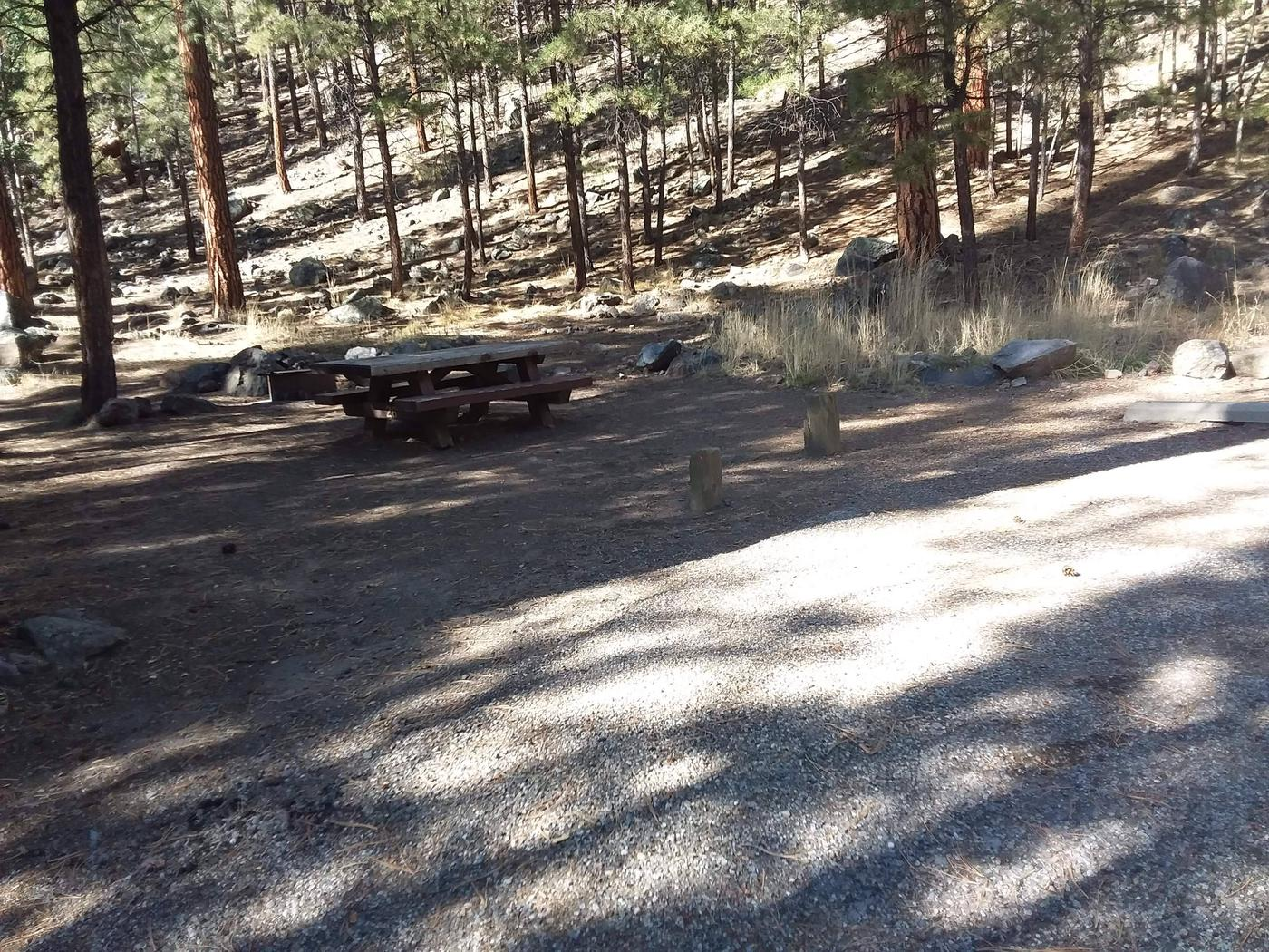 Pines shade the fire pit and picnic table at site 26.Site 26