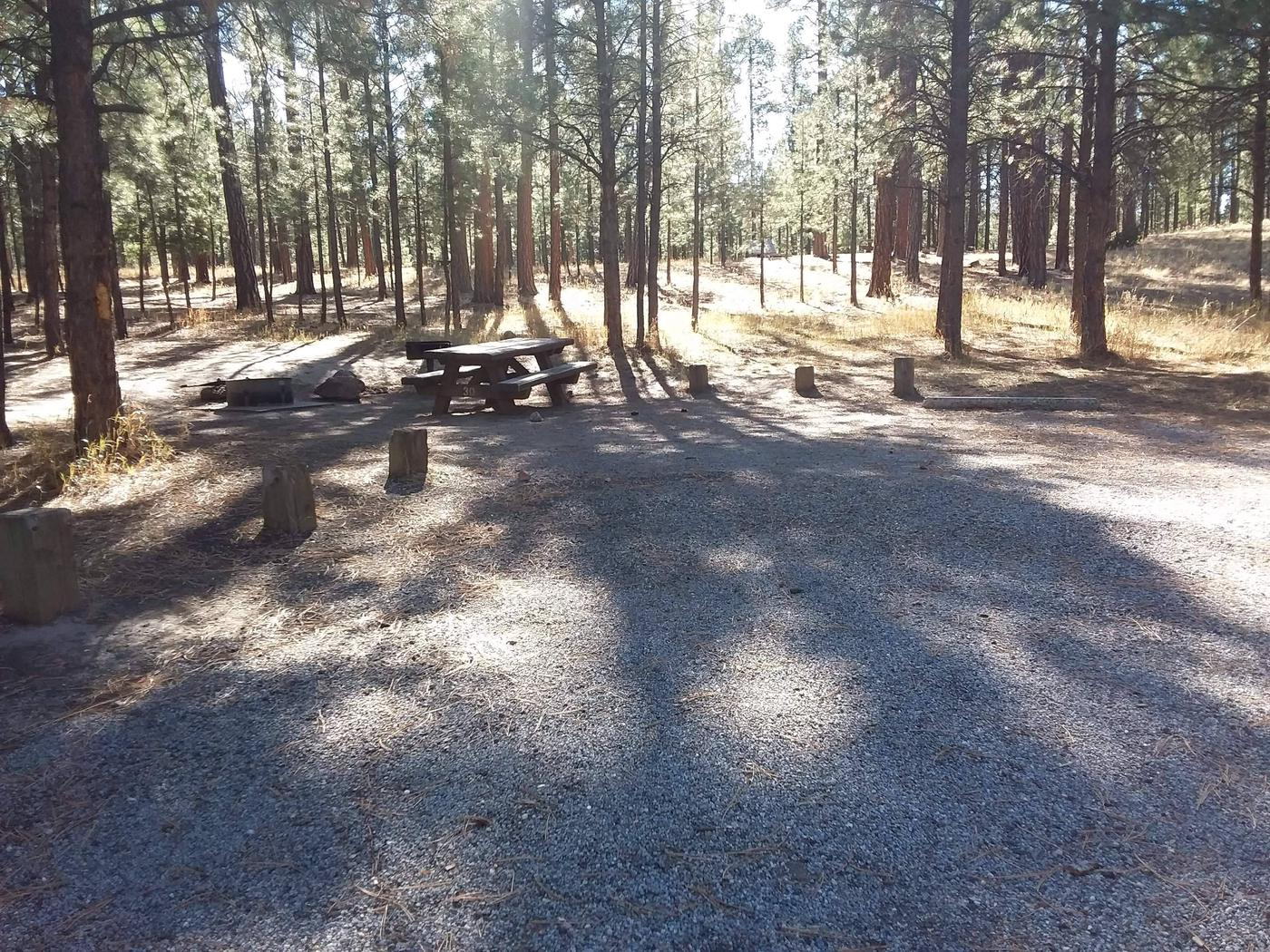 The afternoon shadows from surrounding pines shade site 30 and its picnic table.Site 30