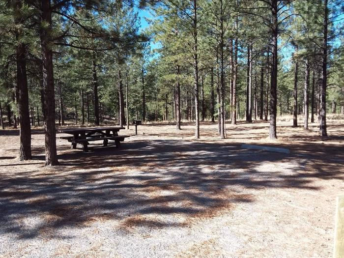 Site 43 has a full set up with picnic table, fire pit, and pedestal grill.Site 43