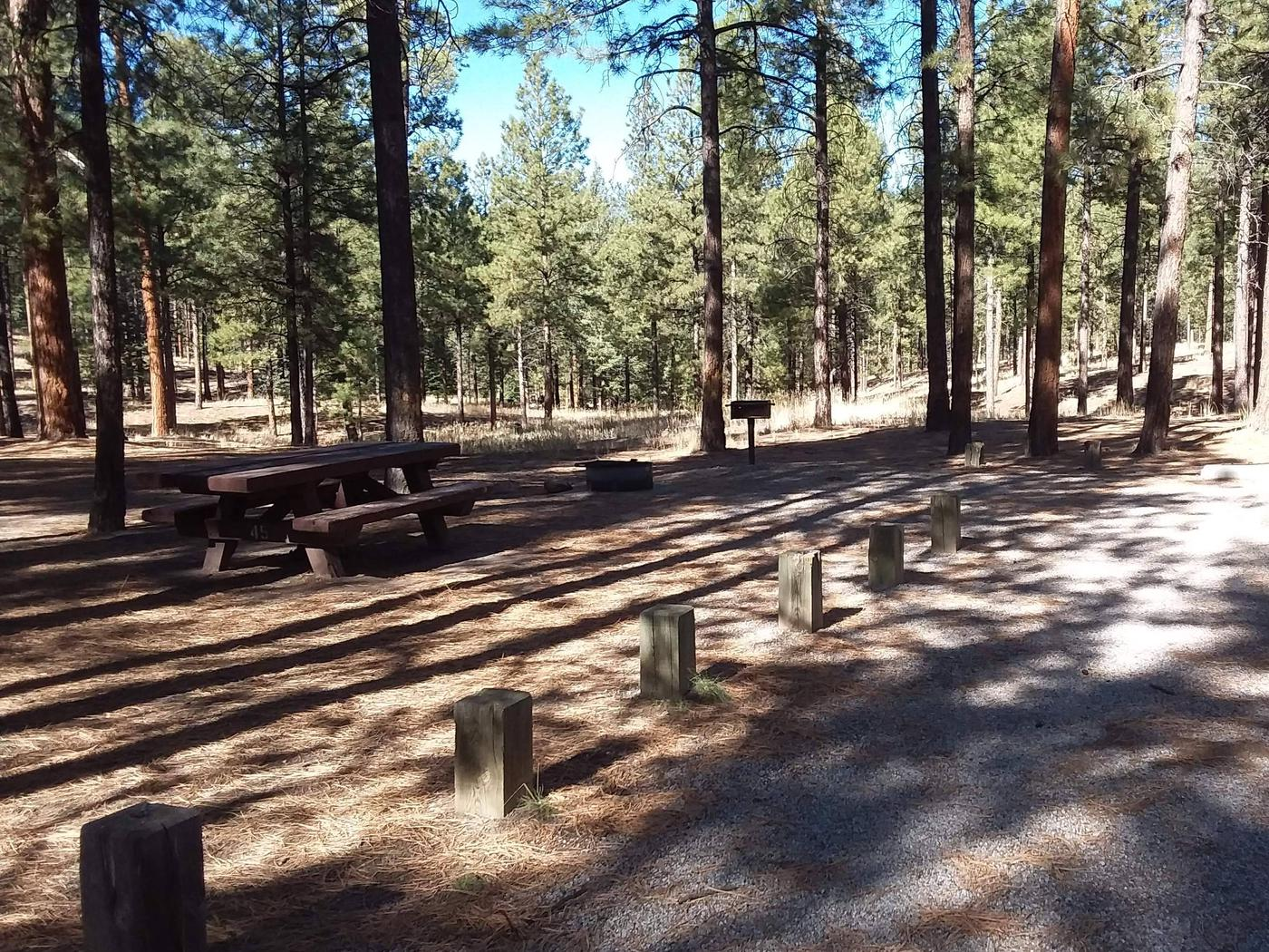 Site 45 has a picnic table, fire pit, grill and shade from nearby pines.Site 45