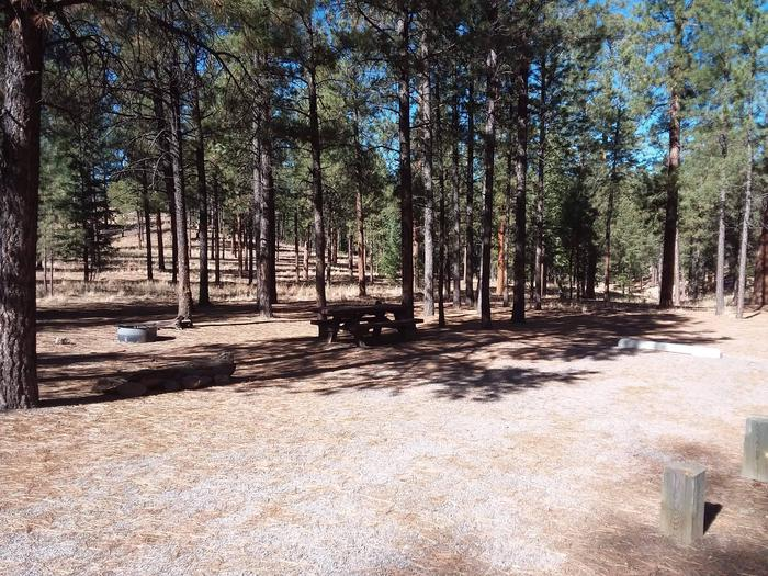 A shaded picnic table and fire pit are provided at site 46.Site 46