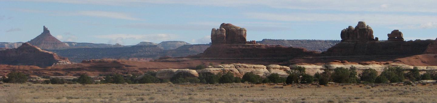Vista of the geological formations in the Needles District.