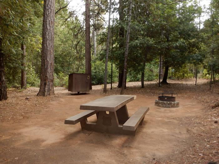 Campsite 3Table, Bear Box and Fire Ring