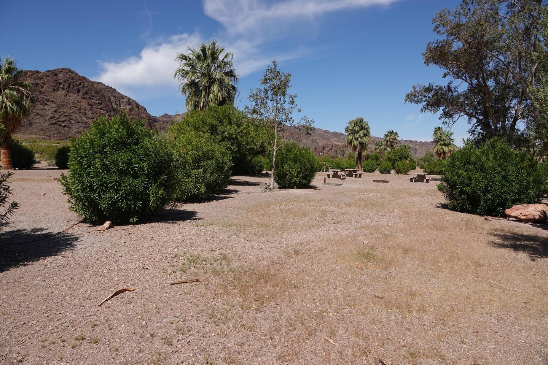 Shot of Campsite 1 located in a desert settingBoulder Beach Group Site 1