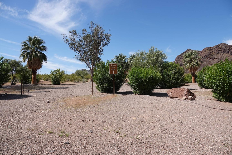 Campsite 1 located in a beautiful desert settingBoulder Beach Group Site 1