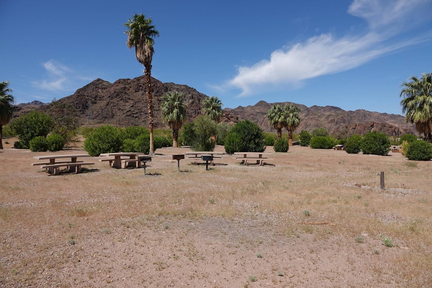 Campsite tables located in a desert settingBoulder Beach Group Site 4