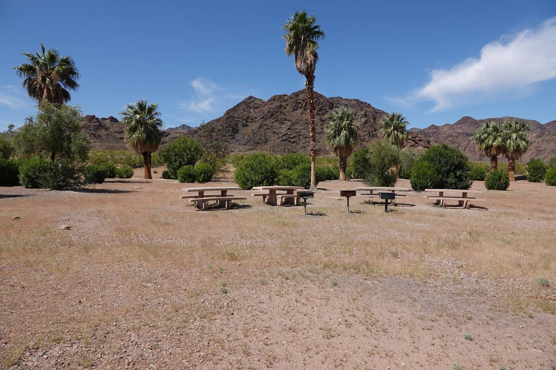 Campsite 4 located in a desert settingBoulder Beach Group Site 4