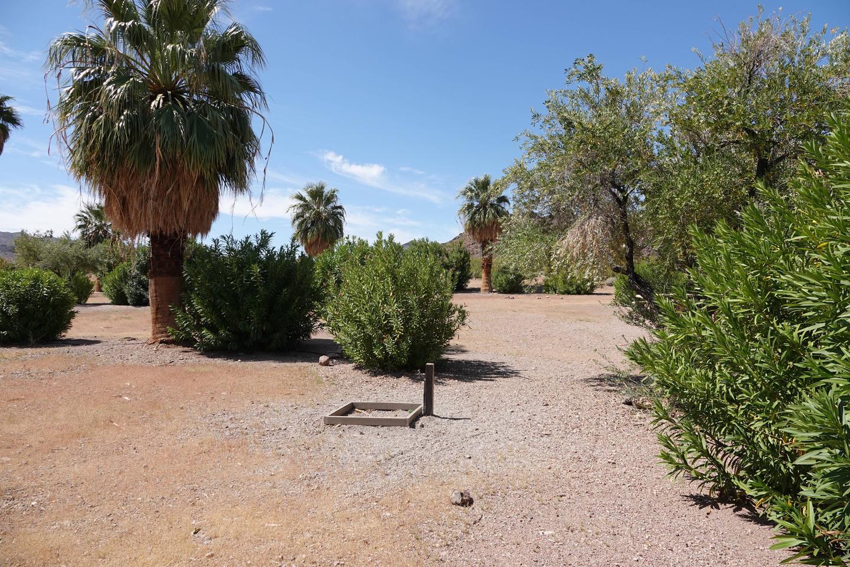 Open Campsite 5 located in a desert settingBoulder Beach Group Site 5