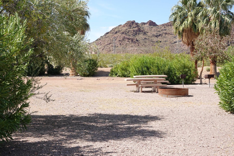 Campsite 5 located in a beautiful open desert settingBoulder Beach Group Site 5