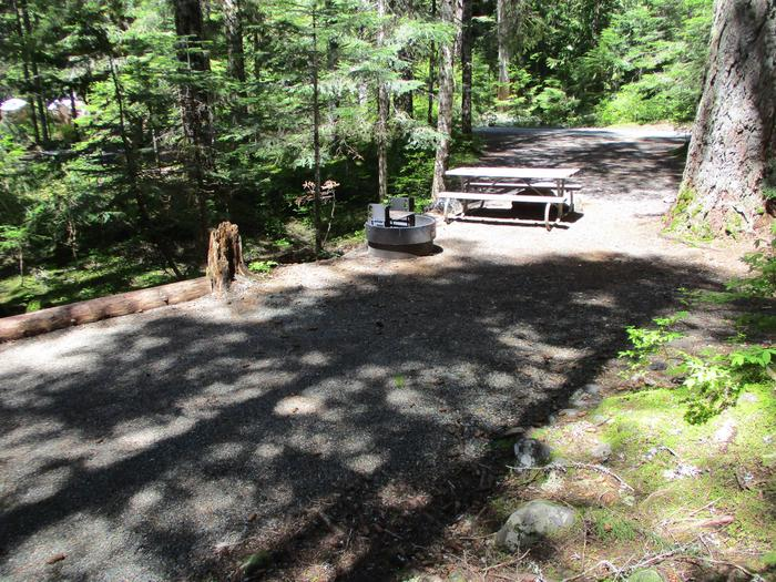 Picnic Table as well as Fire Ring