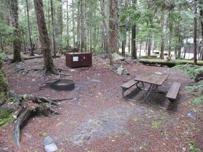Picnic Table, Fire ring, and Bear boxTent area