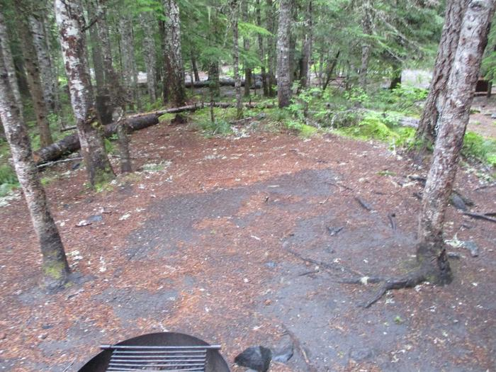 Tent Area and Fire Ring
