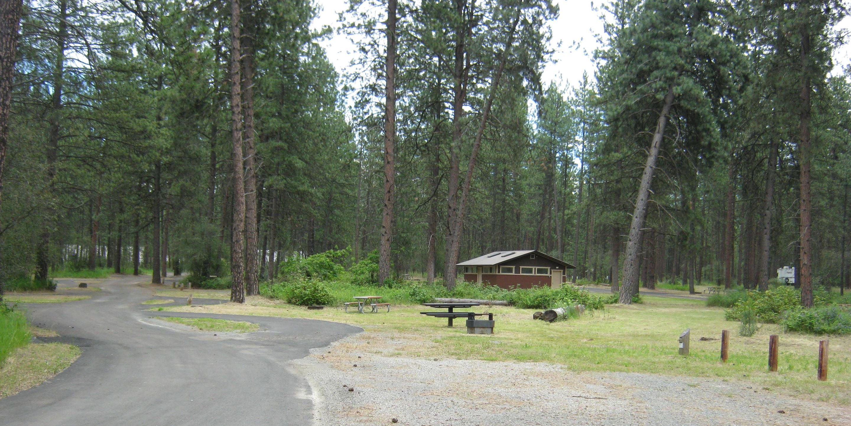 Wide view of site 40