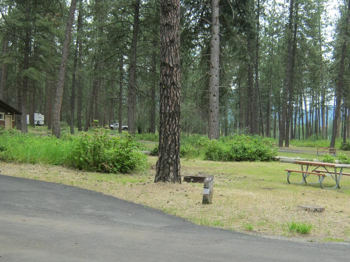 Pull through site with trees in the backgroundSite 43