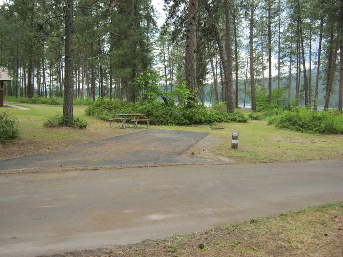 Site 45, back inSite 45, Back in, Trees in Backgournd