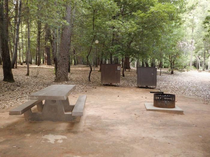 Camp site 5Table, Fire Ring, Bear Box