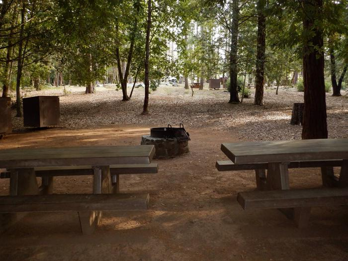 Site 6 DoubleTables, Fire Ring and Bear Box