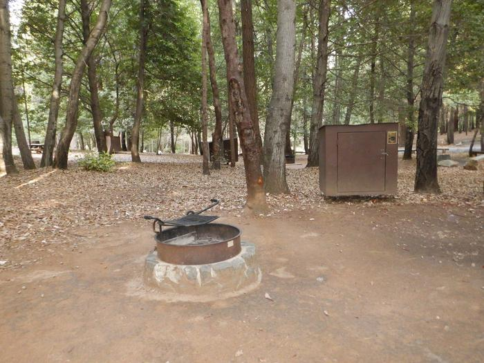 Campsite 7Fire Ring and Bear Box