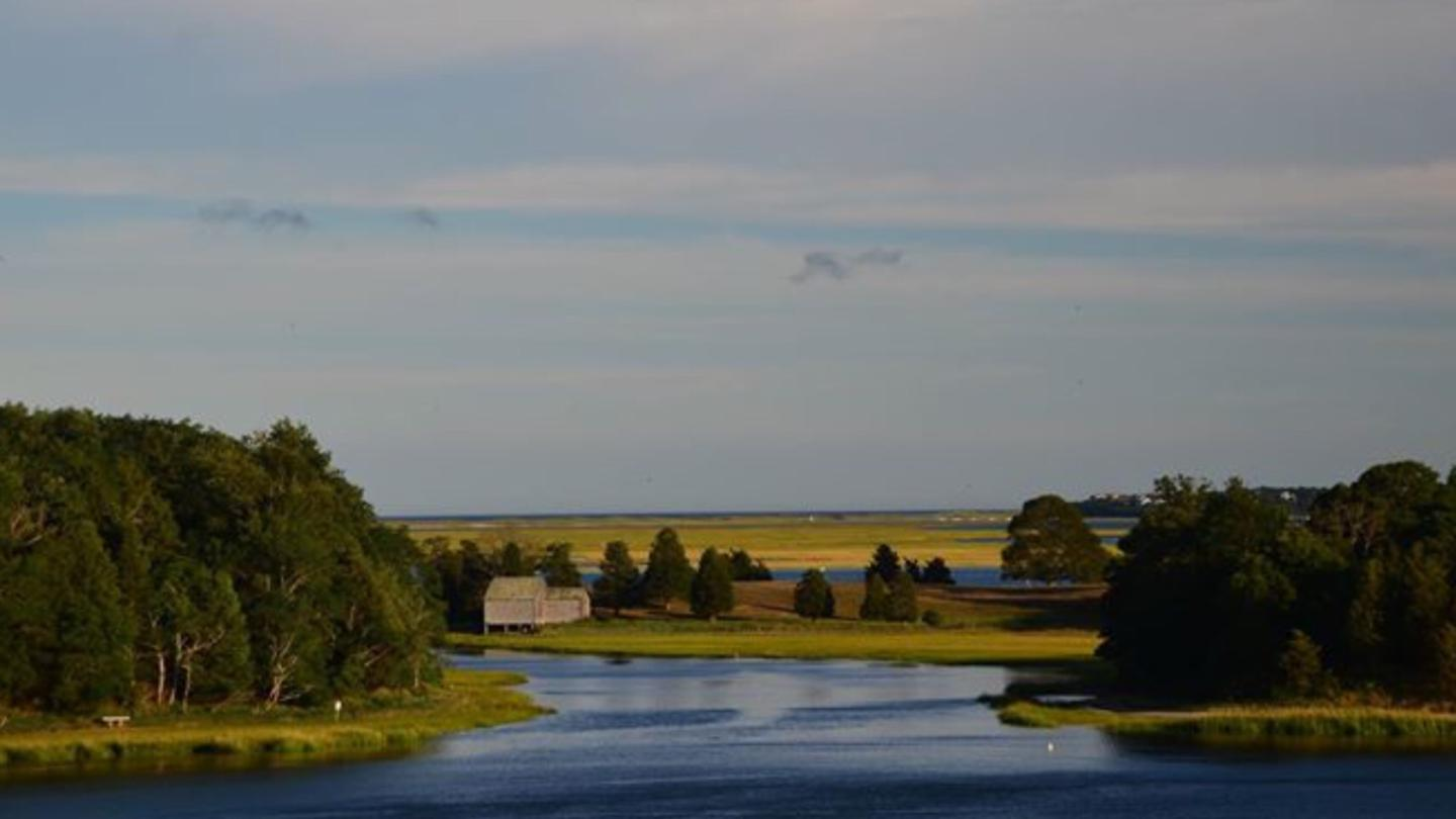 The View From Salt PondThe visitor center's outdoor terrace offers magnificent views of Salt Pond, Nauset Marsh,and the Atlantic.