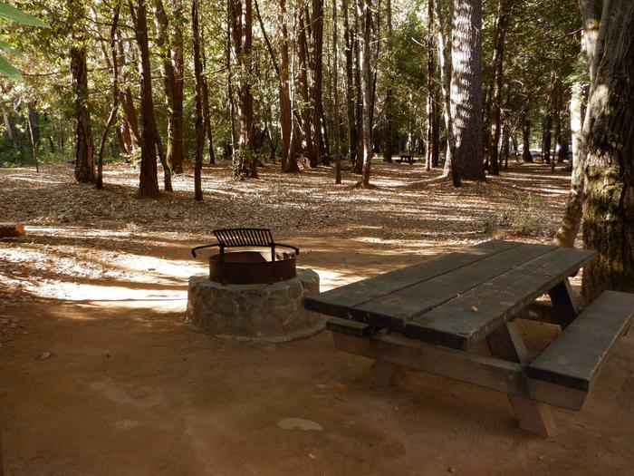 Camp Site 15Table and Fire Ring