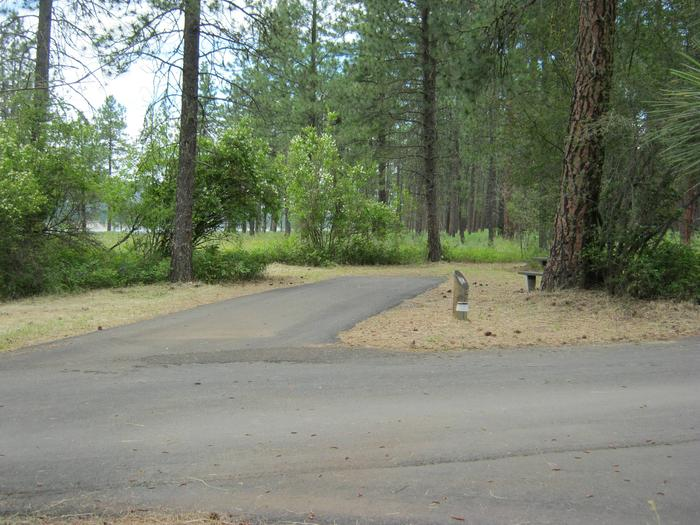 Alt view of 62Site 62, Back in, Trees in background