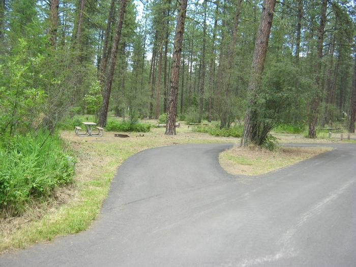 Alt view of 70Site 70, Pull Through, Trees in Background