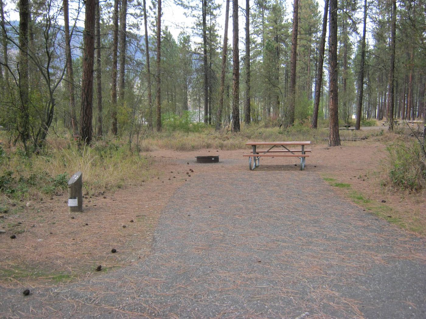 alt view - 72Site 72, Back in, Trees in background