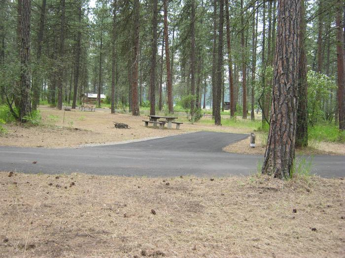 Site 74Site 74, Back in, Trees and comfort station in backround