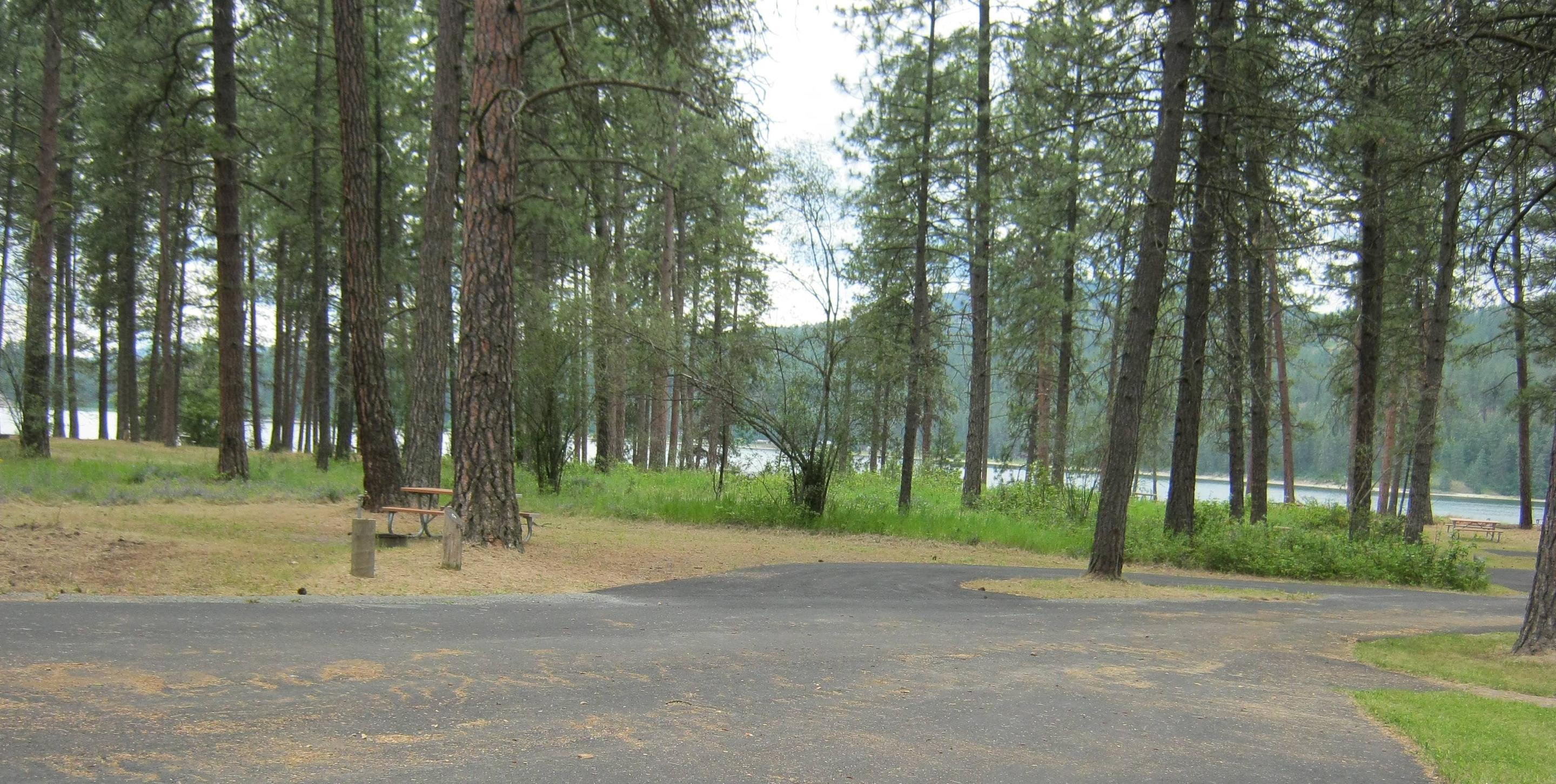 Lake Roosevelt & Pines in back dropPaved Parking Pull Through of site 4