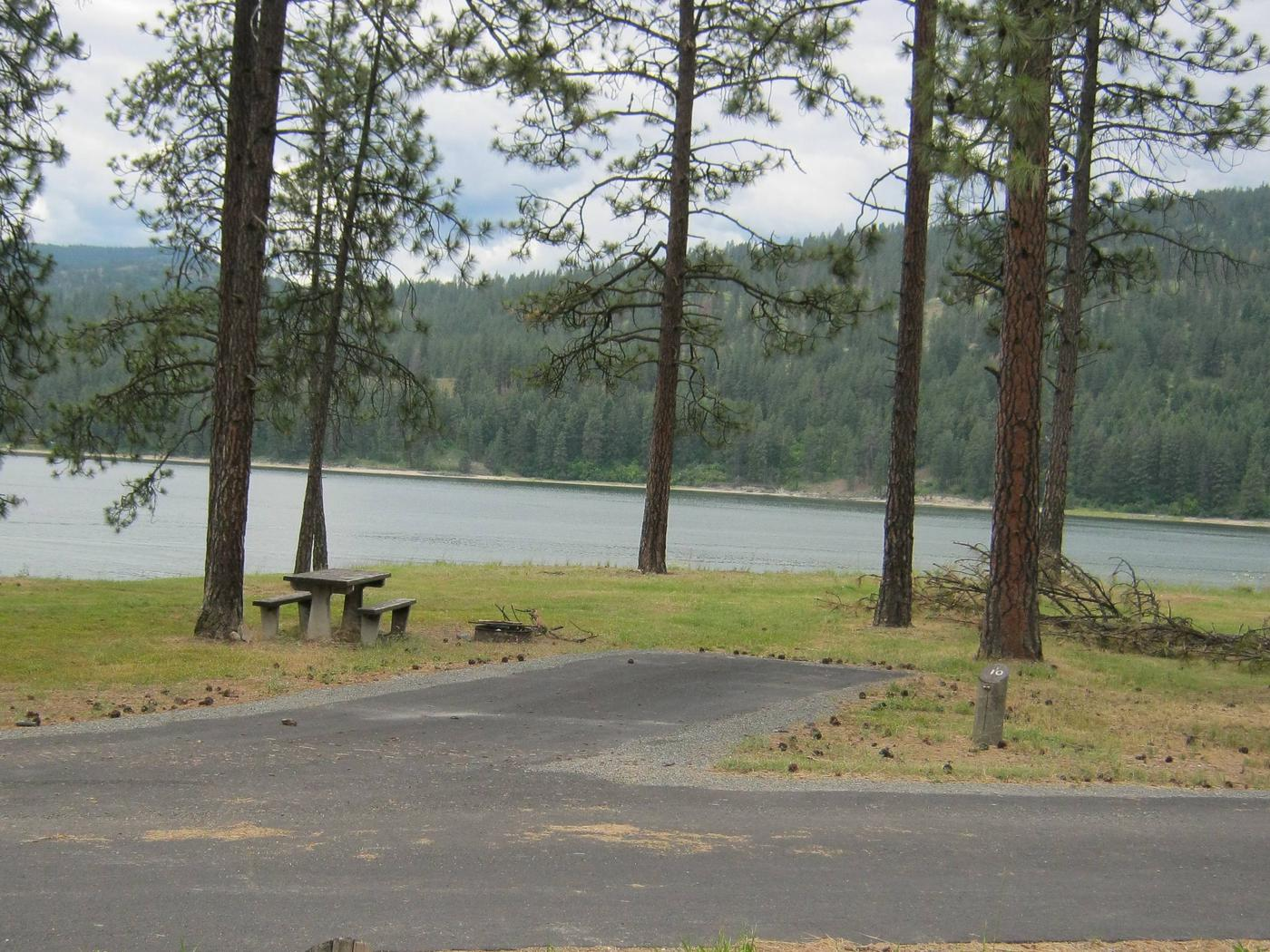 Pine trees and lake in the back dropBack in paved parking