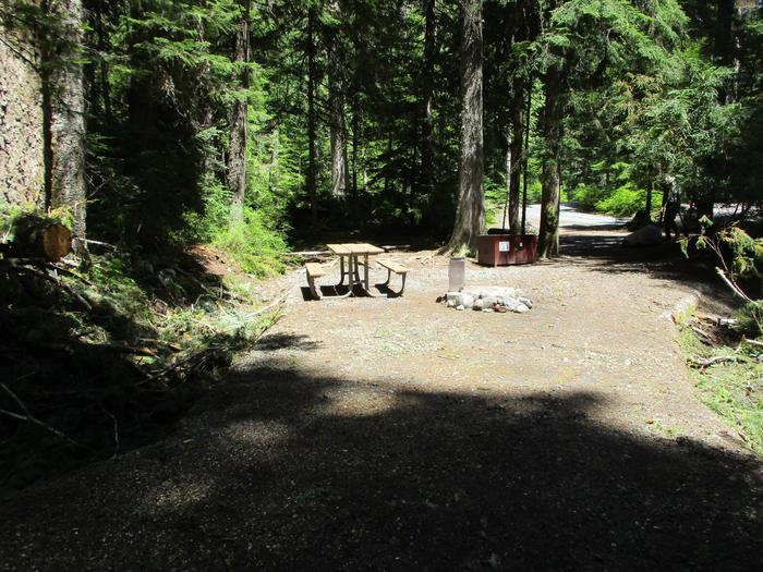 Picnic Table, Bear Box, and Fire Ring